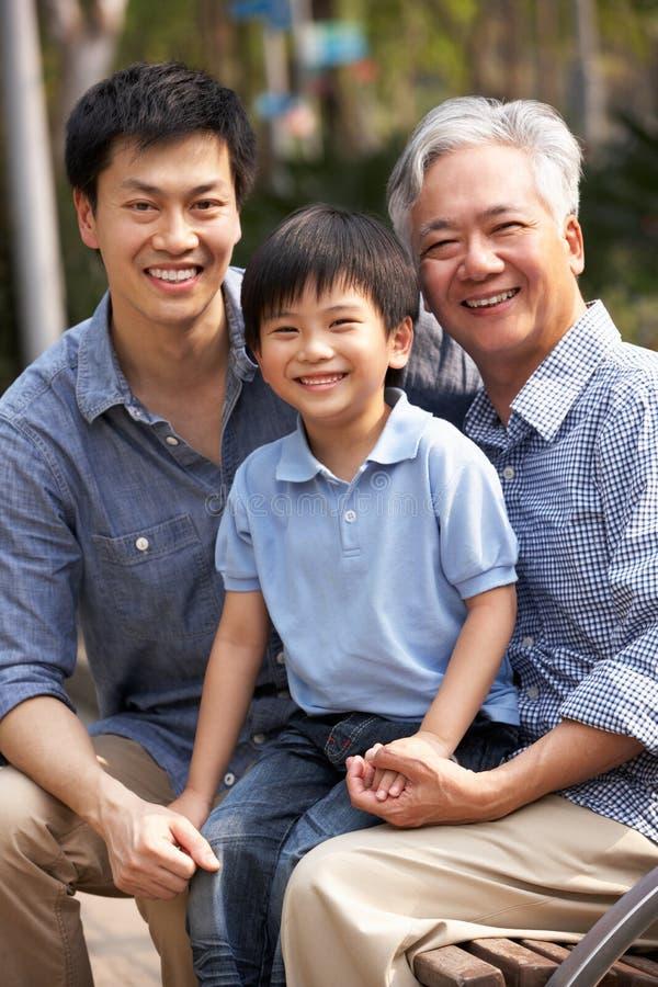 Multi grupo chinês masculino da família de Genenration foto de stock