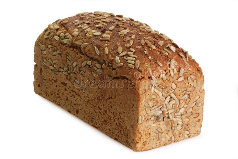 Multi-korrel-brood stock foto