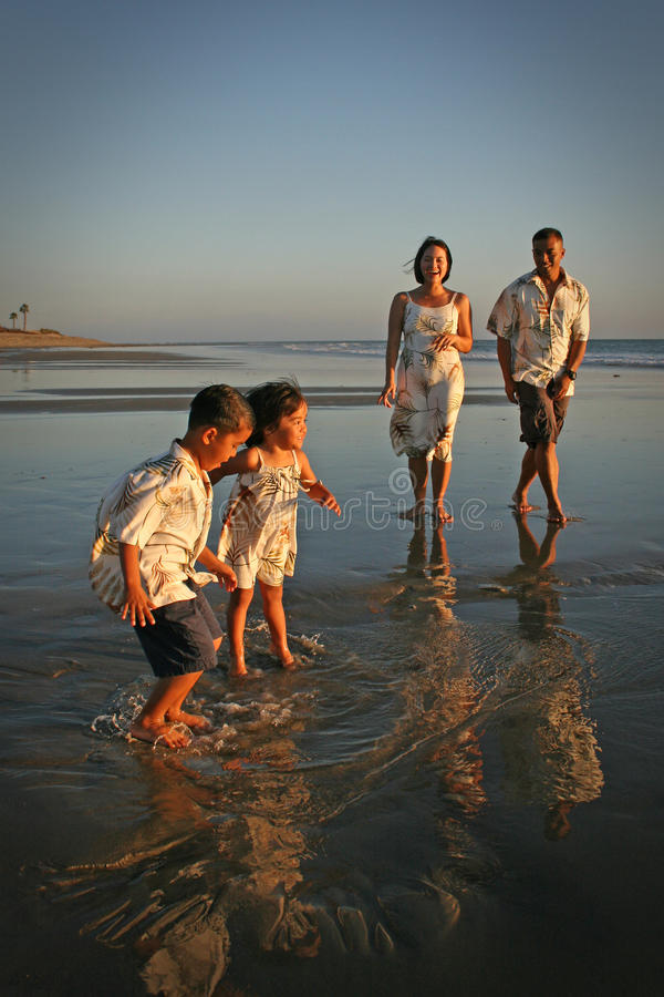 Multi-racial Family on Beach. Multi-racial Family playing together on the beach stock photo
