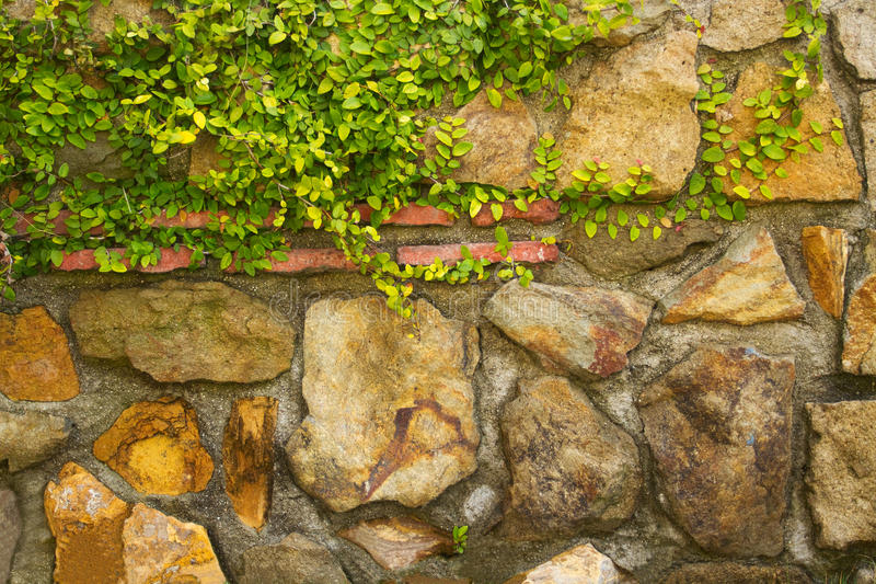 Download Multi-Stone Background Texture Royalty Free Stock Images - Image: 14074309
