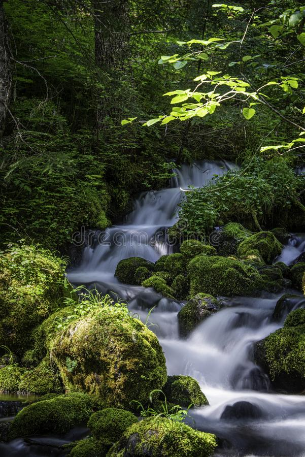 Multi Terraced Falls Dropping Down The Hillside stock images