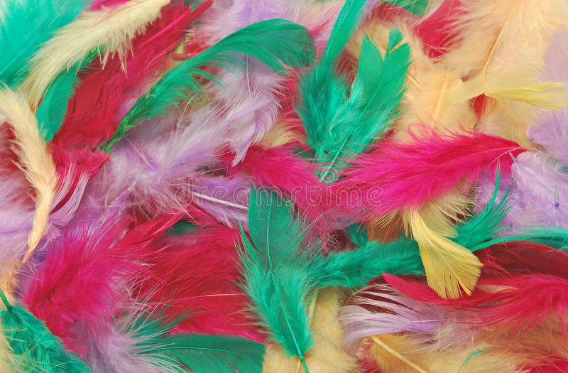 Download Multicolor Feathers Royalty Free Stock Photography - Image: 23560397