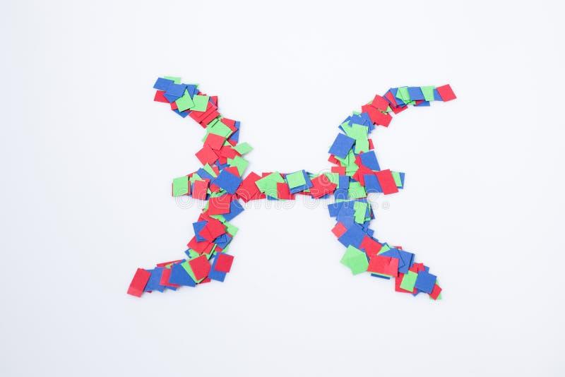 Multicolore de Poissons de symbole de zodiaque d'isolement à un arrière-plan blanc images stock