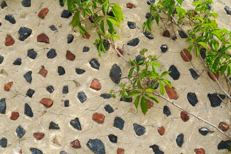 Multicolore delle rocce muri la bella struttura di colore fotografie stock