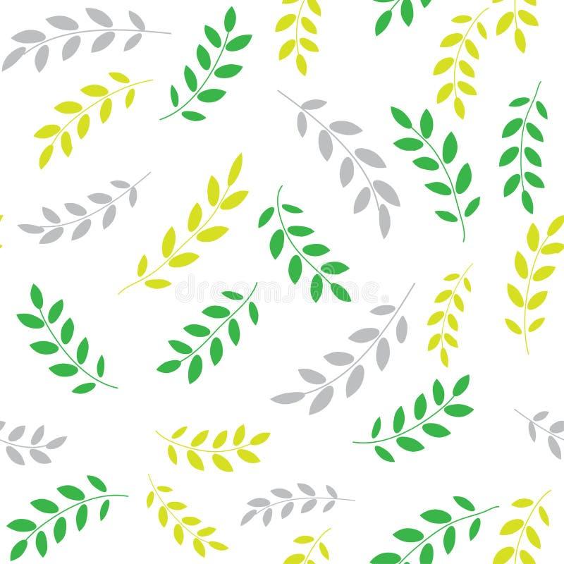 Multicolore, foglie di autunno dell'acacia su fondo bianco Reticolo senza giunte illustrazione vettoriale