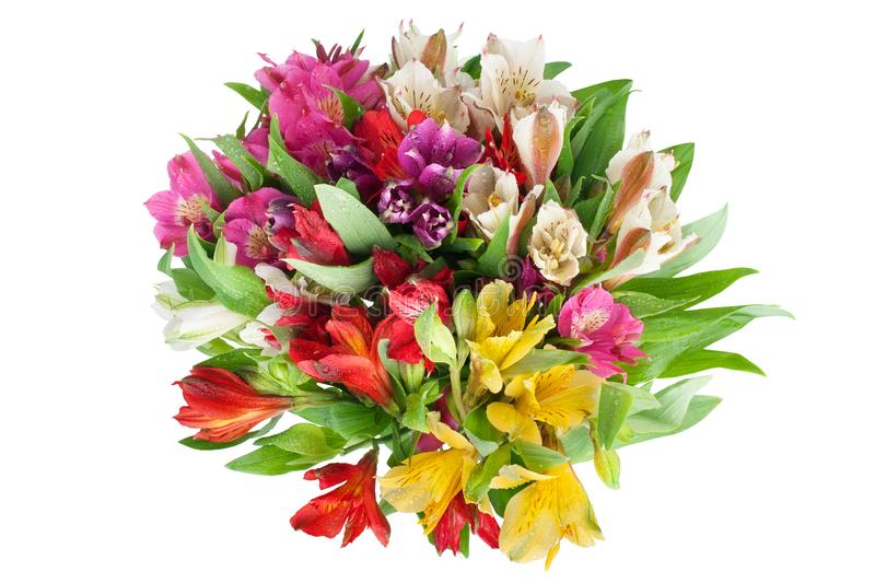 Multicolored alstroemeria lilies flowers round bouquet on white background isolated closeup. Multicolored alstroemeria flowers round bouquet on white background stock photo