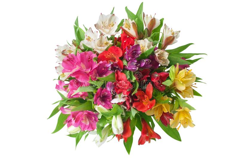 Multicolored alstroemeria lilies flowers round bouquet on white background isolated closeup. Multicolored alstroemeria flowers round bouquet on white background stock images