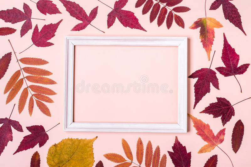 Multicolored autumn leaves frame on pink pastel background. Hello Autumn concept.  stock image