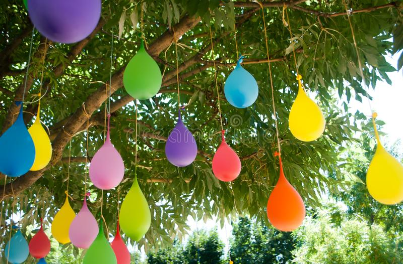 Multicolored balloons filled with water, hanging on a tree stock photo