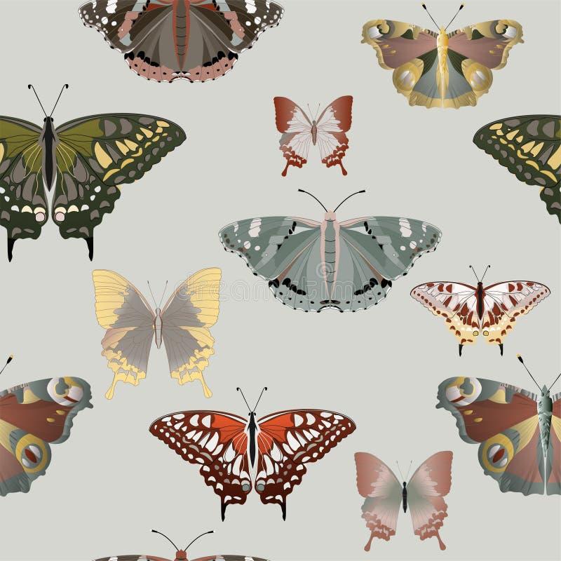 Small Butterflies Stock Illustrations – 2,487 Small Butterflies ...