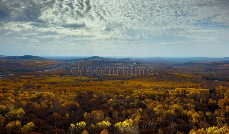 Multicolored de herfstbos, bergen en hemel met wolken royalty-vrije stock fotografie