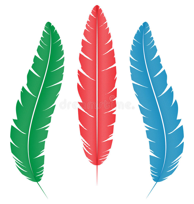 Multicolored feathers on white vector illustration