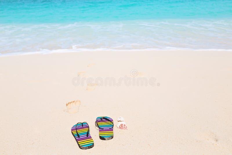 Multicolored flip-flops on a sunny beach.Tropical beach vacatio. Multicolored flip-flops on a sunny beach. Tropical beach vacation and travel concept stock image