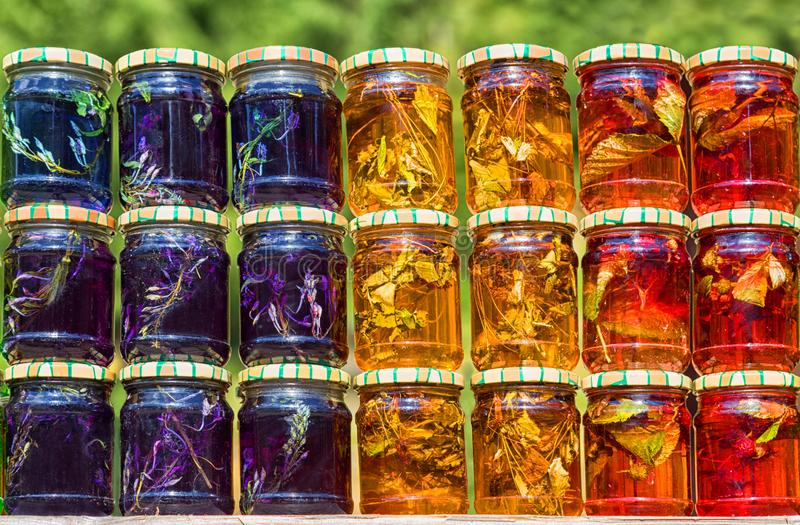 Multicolored honey with herbs and berries in small jars on green leaves background. Sunny summer day. Concept of natural and healthy eating and cure. Close up royalty free stock photography