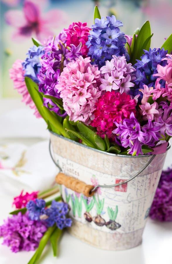 Multicolored hyacinten stock foto's