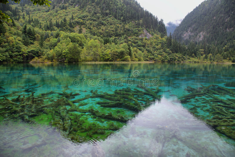 Multicolored meer i in Jiuzhaigou, China, Azië royalty-vrije stock afbeelding