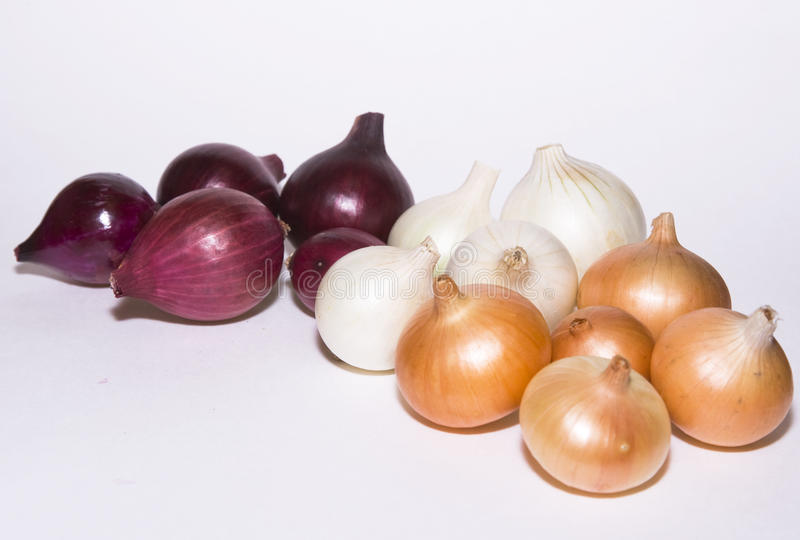 Multicolored onion royalty free stock image