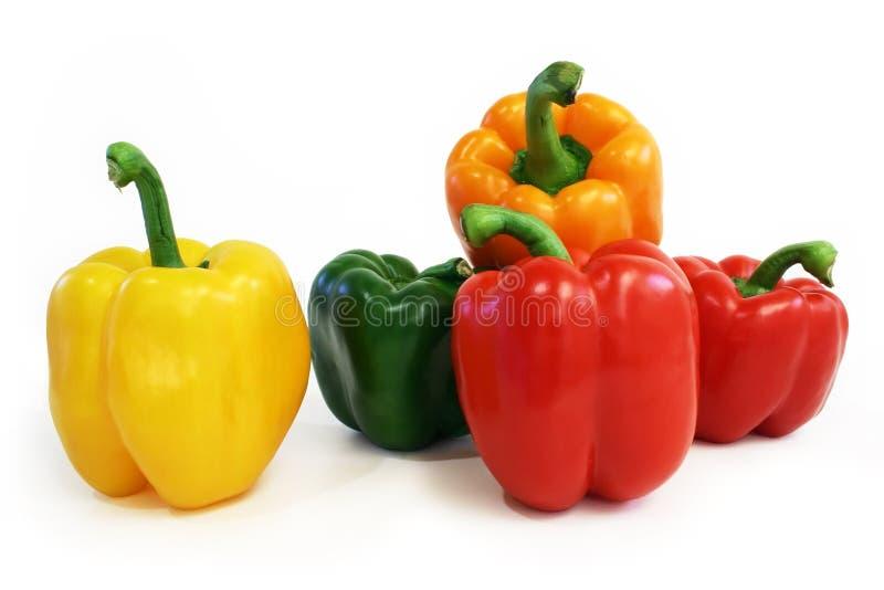 Multicolored Peper stock foto