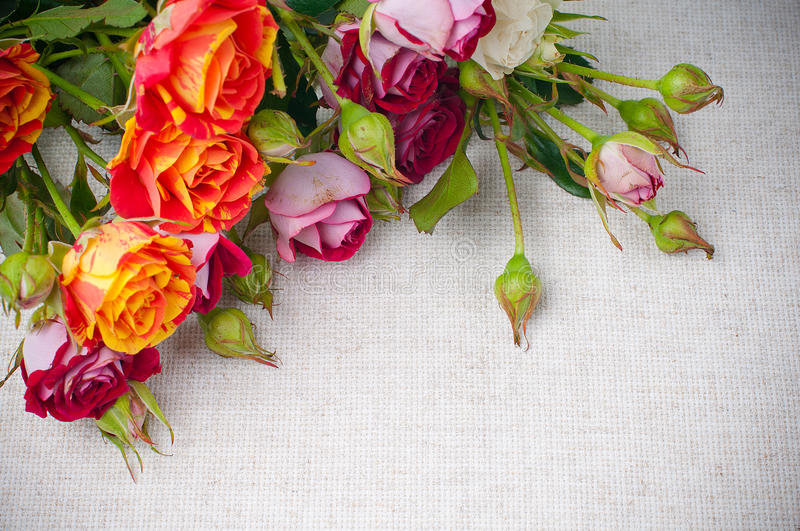 Download Multicolored Roses On Linen Fabric Stock Image - Image of backgrounds, multicolored: 27321793