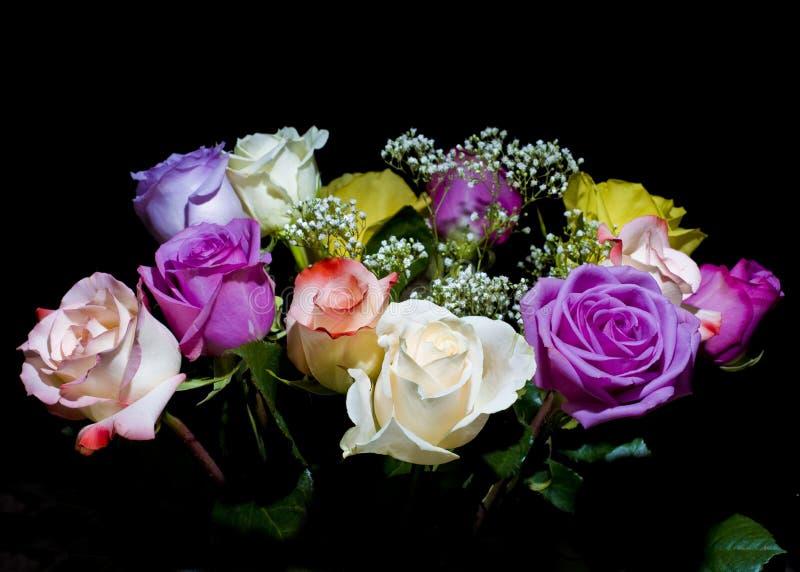 Multicolored rozen op zwarte stock afbeelding