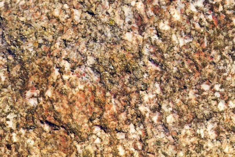 Multicolored steen, close-up stock fotografie