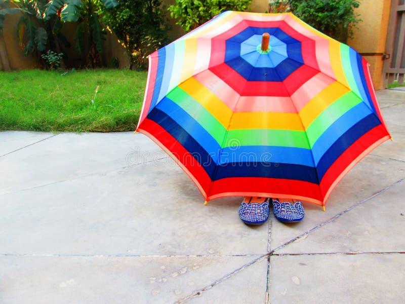 Multicolored Umbrella royalty free stock photography