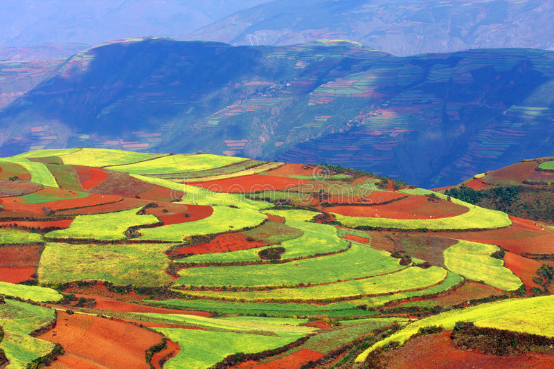 Multicolored upland. It ismulticolored upland in yunan stock photo