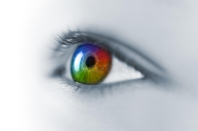 Multicolored Young Eye Macro royalty free stock images