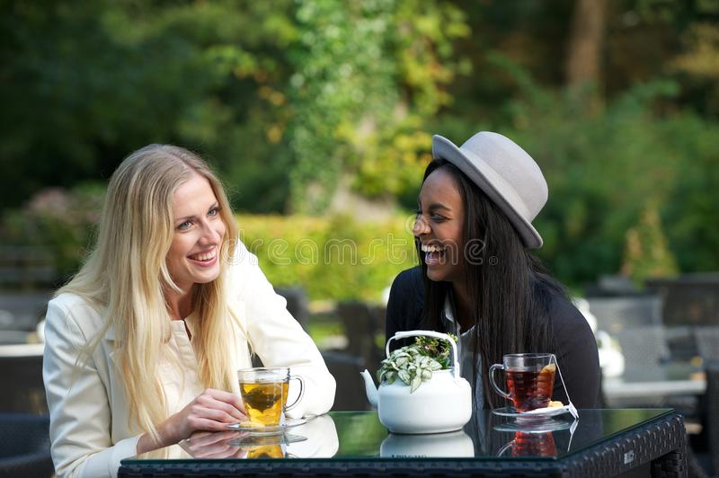 Multicultural Friends Laughing royalty free stock photo