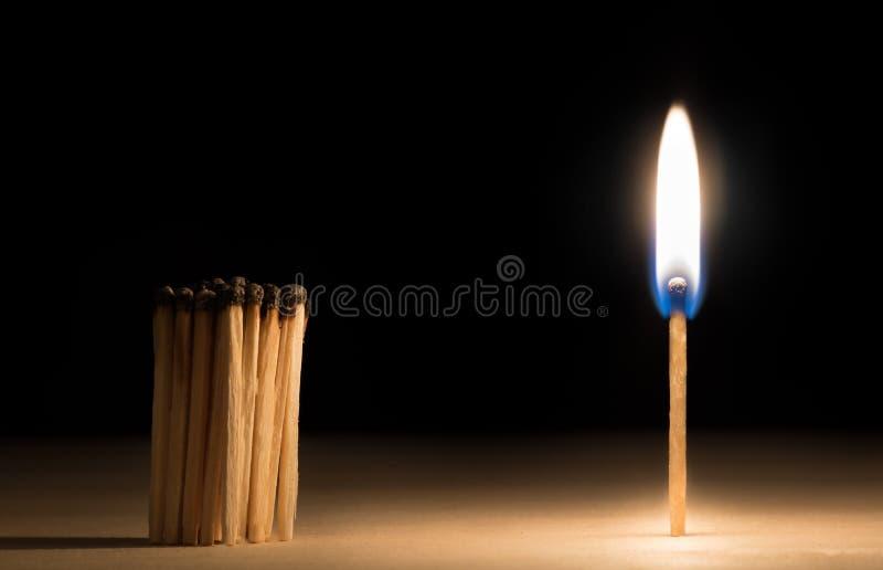 Multidão de fósforos queimados que estão antes do fósforo no conceito do fogo de foto de stock royalty free
