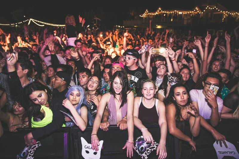 Multidão do concerto fotografia de stock