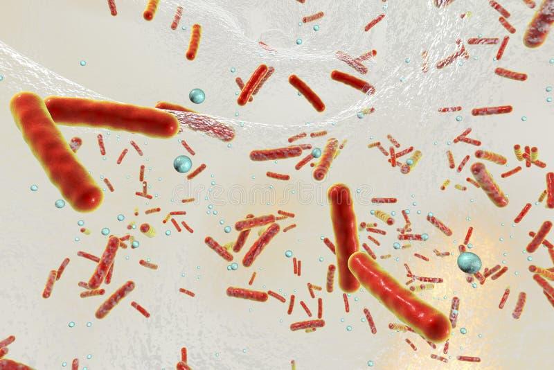 Multidrug odporne bakterie wśrodku biofilm royalty ilustracja