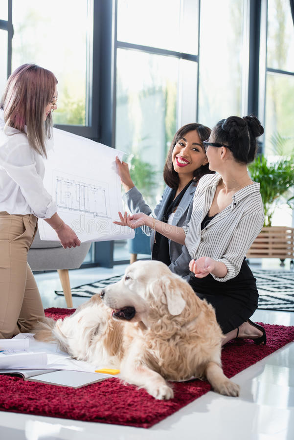 Multiethnic businesswomen looking at blueprint with dog at office. Smiling multiethnic businesswomen looking at blueprint with dog at office royalty free stock photos