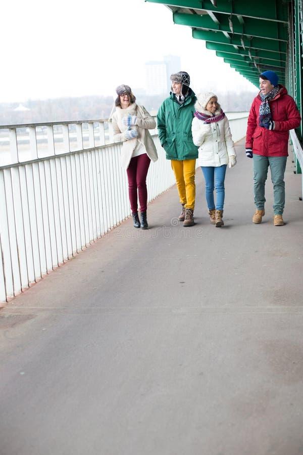 Multiethnische Freunde, die auf Fußweg während des Winters gehen lizenzfreies stockfoto