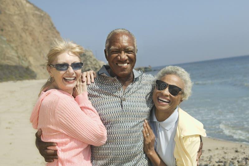 Multiethnische Freunde, die auf Strand umfassen stockfotografie
