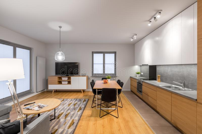 Multifunctional and modern loft apartment. Multifunctional, modern loft apartment with kitchen, dining area, tv living room and hardwood floor royalty free stock images