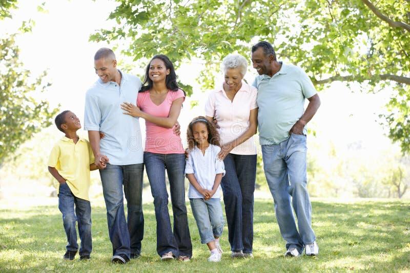 Multigeneratie Afrikaanse Amerikaanse Familie die in Park lopen stock foto