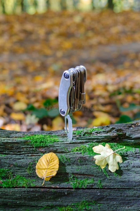 Multihulpmiddel op een groot mos-behandeld hout royalty-vrije stock foto
