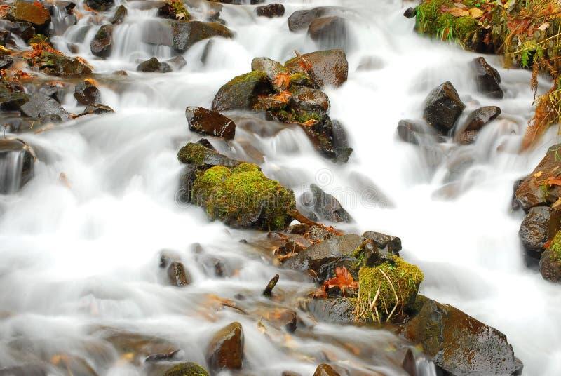 Multinomah falls cascade royalty free stock photo