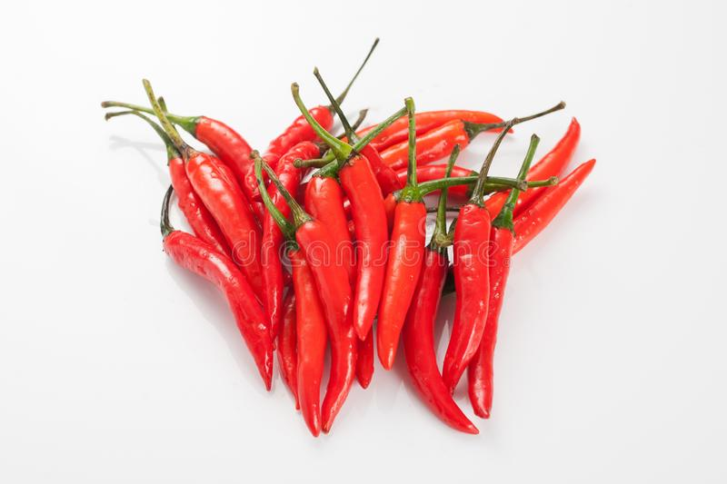 Color chilli pepper on white background royalty free stock photo