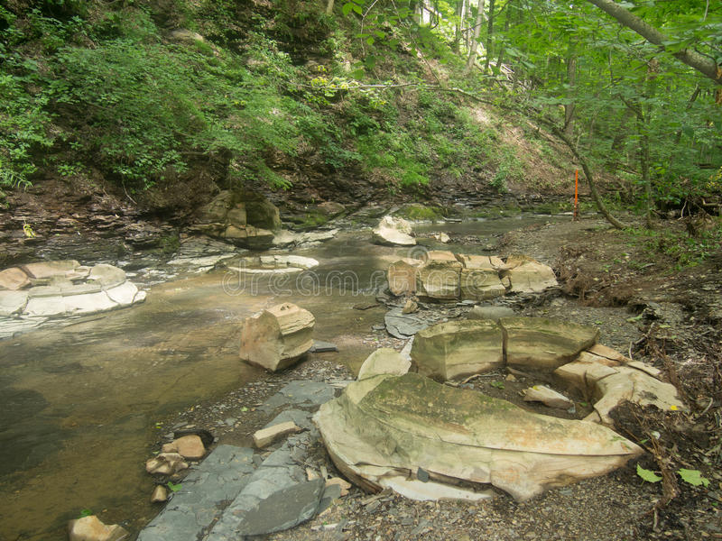 Multiple Concretions. In a stream at a Delaware County Ohio Park stock images