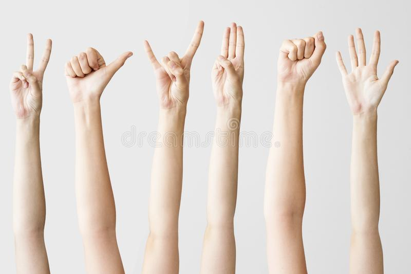 Multiple female hand gestures on gray background stock photo
