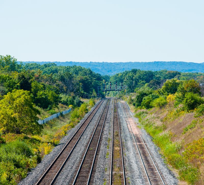 Multiple railroad tracks heading into forested area in Burlington, Ontario, Canada stock images