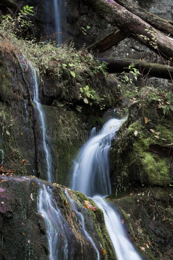 Multiple streams of water cascading over moss covered rocks in a mountain landscape royalty free stock images
