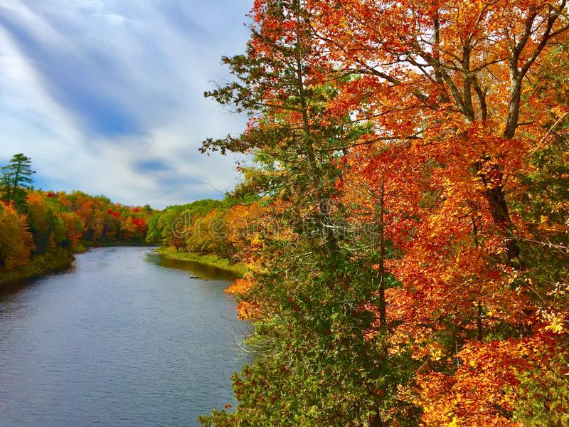 Multiple trees with fall colors and river from bridge royalty free stock photos