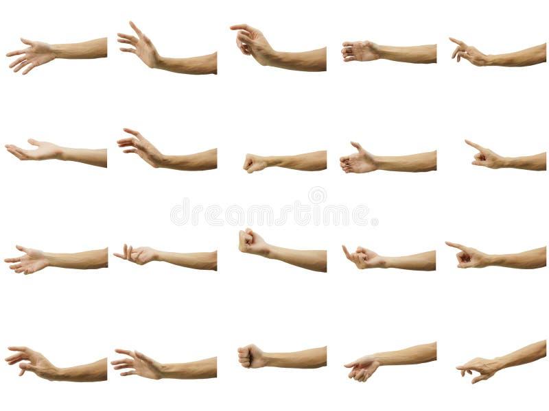 Multiplo del gesto di mano dell'uomo isolato su fondo bianco Tagli con attenzione dallo strumento della penna ed inserisca un per immagine stock libera da diritti