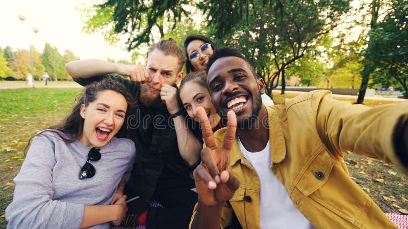 Multiracial группа в составе друзья принимает selfie в парке сидя на одеяле, представляя и смотря камеру Афроамериканец стоковые изображения