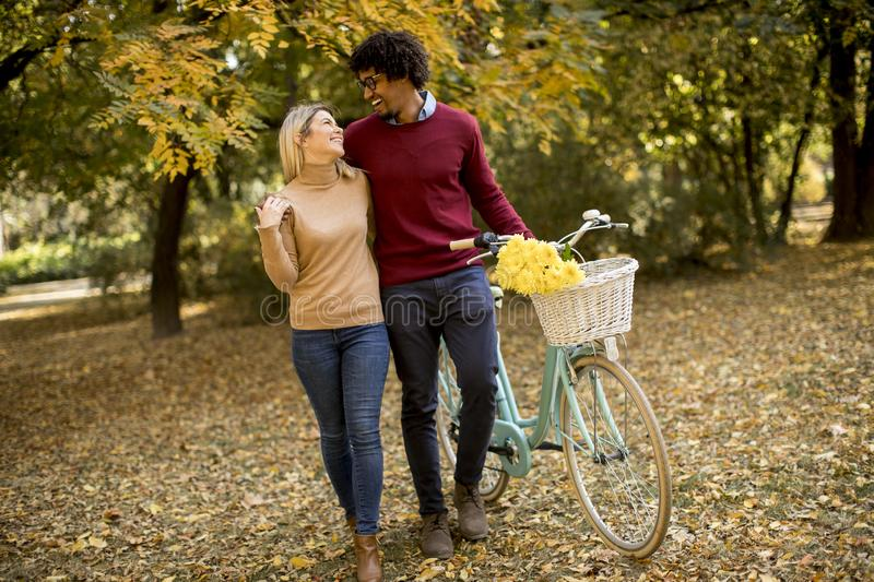 Multiracial couple with bicycle walking in the autumn park stock photography
