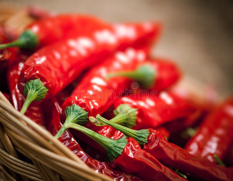 Download Multitude Of Red Chili Peppers Stock Image - Image: 23360831