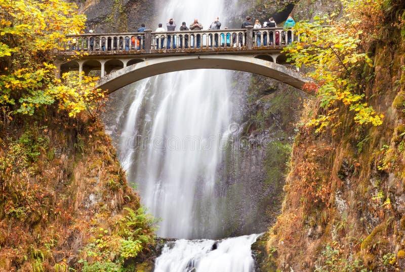 Multnomah下跌瀑布哥伦比亚河峡谷,俄勒冈 免版税图库摄影